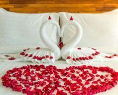 فندق إتش دبي يكشف عن باقات عيد الحب خلال شهر فبراير